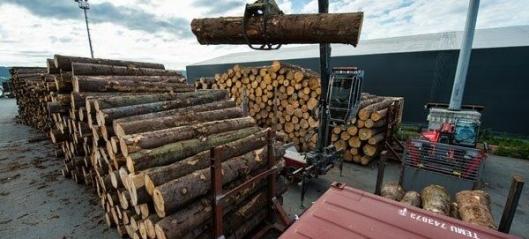 Sender tømmer fra Drammen til Kina
