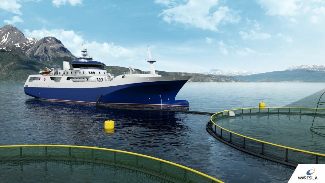 Norwegian Gannet, slakteskipet til Hav Line, skal etter planen settes i drift i høst.