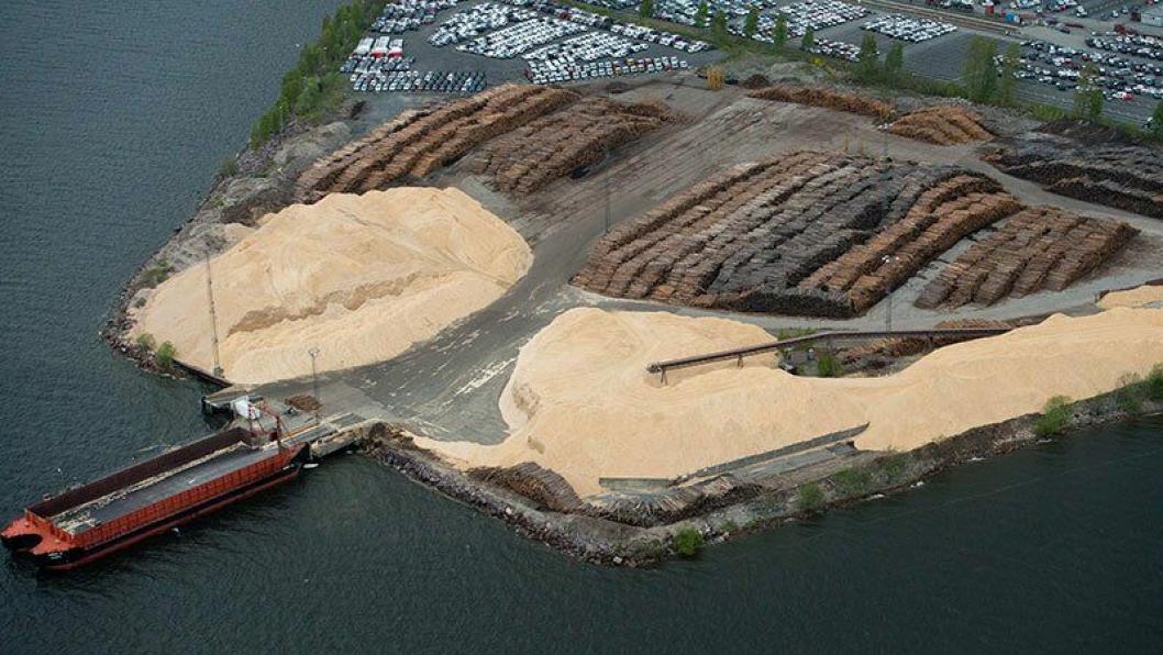 Gode tømmerkaier er nødvendig for å få hogd skogen langs kysten.