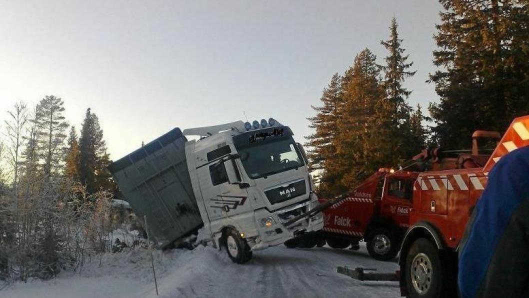 Man kan ikke forvente at en sjåfør fra Romania eller et annet søreuropeisk land skal takle norske vinterveier, hevder Ole-Roger Storås med 45 år bak rattet.