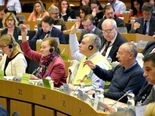 Inne i EU-parlamentet ble det stemt over flere forslag. Bare ett fikk flertall.