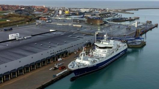 Hav Line har investert over 800 millioner kroner i slakteskipet Norwegian Gannet og et hypermoderne mottaksanlegg i Hirtshals.