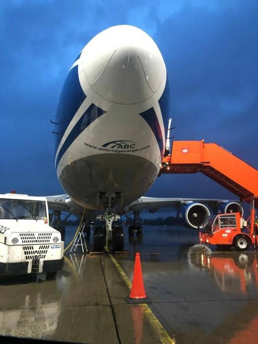 Med tre ukentlige avganger kan AirBridgeCargo eksportere sjømat for rundt 750 millioner kroner årlig.