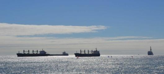 Dette er maritime bedrifter opptatt av
