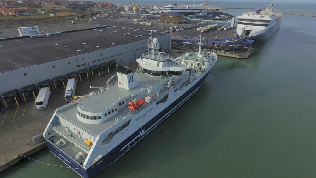 Norwegian Gannet har bidratt med en stor økning i fisketransporten via Hirtshals. Her til kai ved den moderne treminalen.