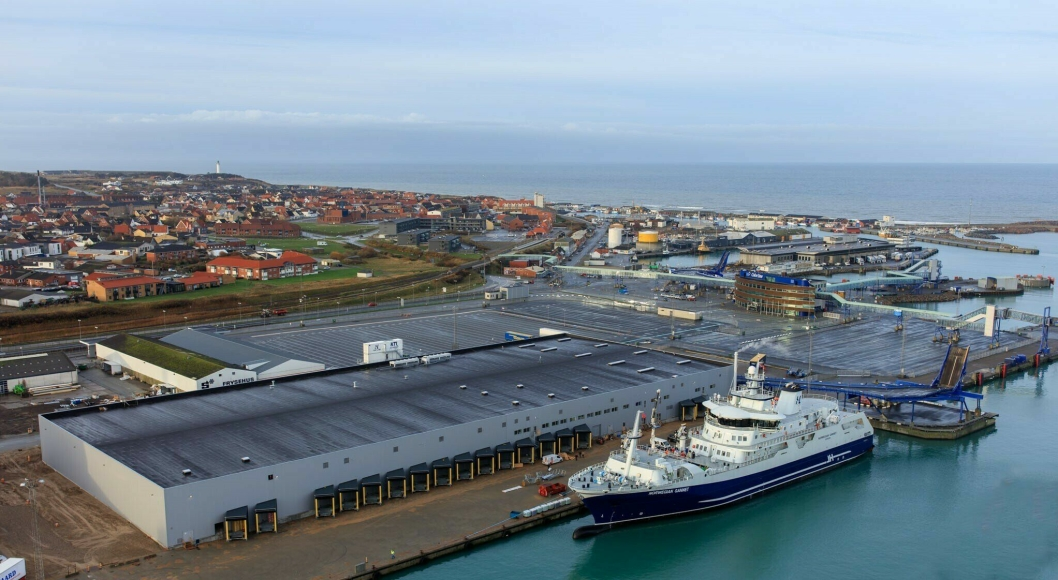 Norwegian Gannet er et innovativt slakteskip som frakter norsk laks raskere til markedet, her ved kai ved Hav Lines mottaksanlegg i Hirtshals.
