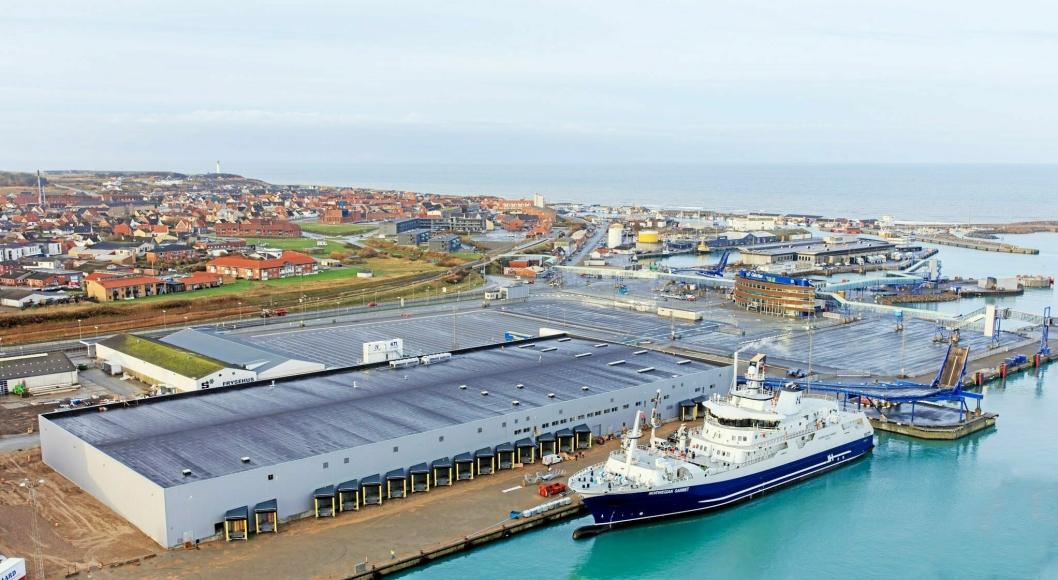 Hav Line har investert nærmere en milliard kroner i skipet Norwegian Gannet og mottaksanlegget ved kaien i Hirtshals.