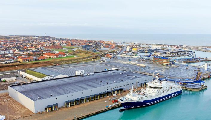Norwegian Gannet leverer fisken ved et moderne mottaksanlegg i Hirtshals.