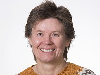 – En bærekraftig by-logistikk krever kunnskap om sammenhengen mellom varelevering og husholdningers handle- og reisemønster, sier seniorrådgiver Astrid Bjørgen i SINTEF.