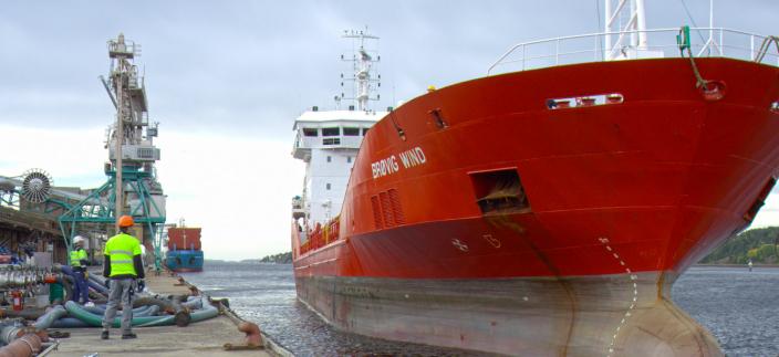 Ifølge havnedirektør Tore Lundestad, sliter flere industribedrifter med å få inn skip til kai, blant annet Denofa.