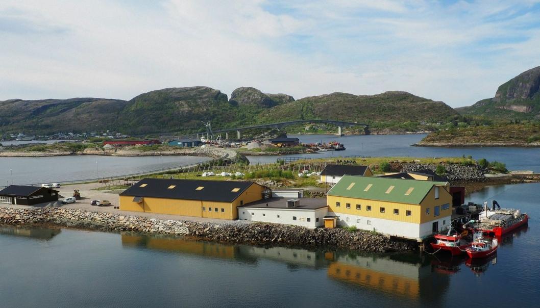 50% av verdens lakseoppdrett foregår i Norge. Ute på Refsnes mellom hav og fjell er Refsnes Laks en sterk bidragsyter. Til høsten starter selskapet bygging Columbi Salmon som på sikt skal produsere minst 80.000 tonn laks årlig på land.