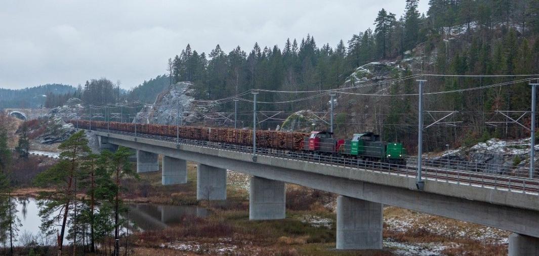 Med en togterminal i Larvik kan tømmer og flis fraktes effektivt til Halden.