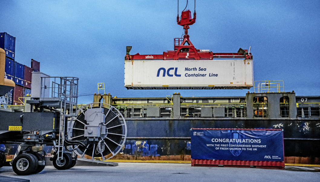LYKKES: North Sea Container Line er blant rederiene som har fått støte tidligere. Nå skal flere godsoverføringsmidler fordeles.