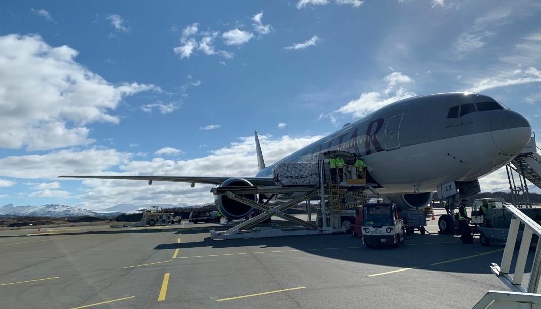 Qatar Airways skal fly to ganger i uken fra Bodø med sjømat.