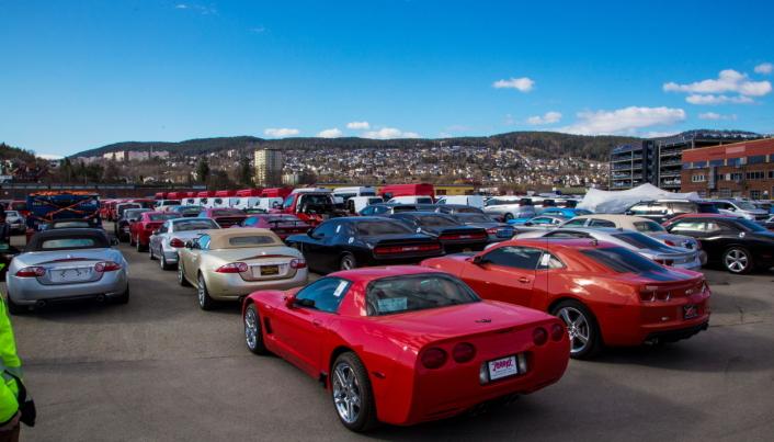 MOTORDUR: Bilimport er Drammen Havns viktigste sektor, men ikke alt er «kjedelige» Tesla-er og Toyota-er. Det kommer av og til partier med litt mer spennende kjøretøy.